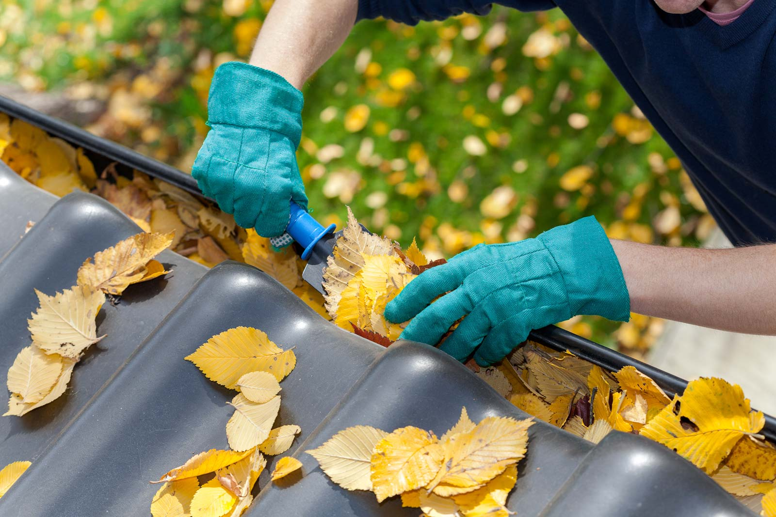 Do Leaf Guards Make Sense For Your Gutters? - Holloway Gutter Corp